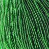 Seedbead Transparent Medium Green 10/0 Strung